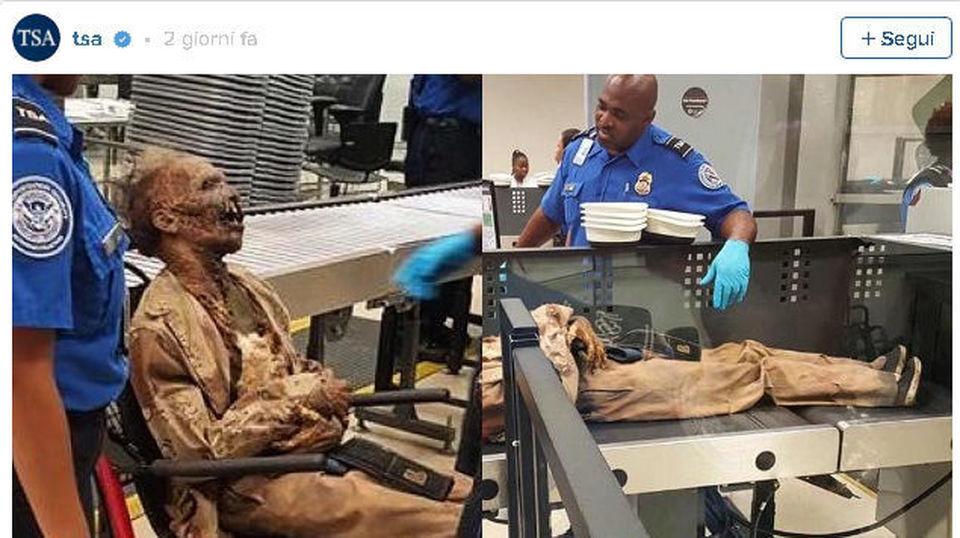 Aeroporto A Capri : Cadavere in aeroporto ad atlanta il mattino